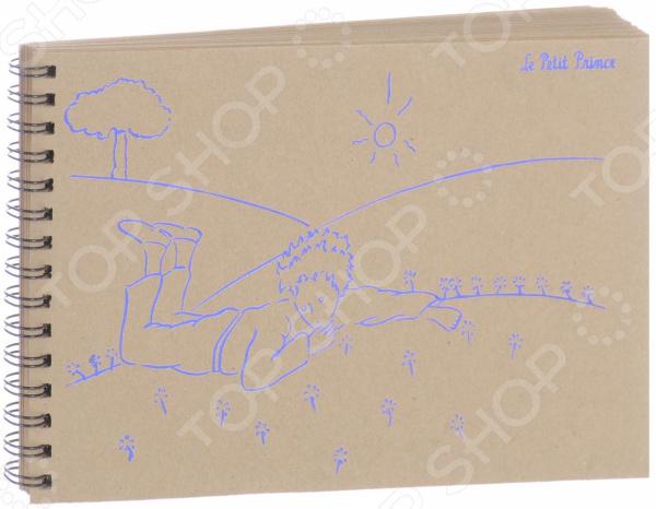 Блокноты. Тетради Эксмо 978-5-699-91633-7 Маленький принц. Альбом для зарисовок