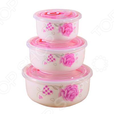 Набор керамических контейнеров «Дикая роза» фантазер josephine набор плетение из фольги серебрянная роза