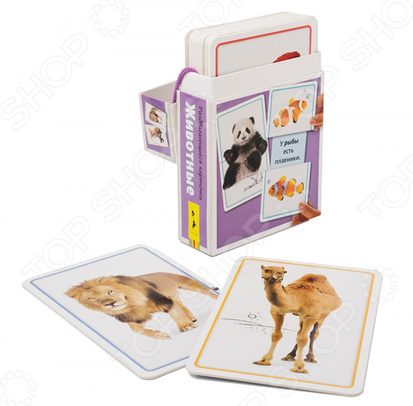 Набор развивающих карточек Росмэн «Животные»
