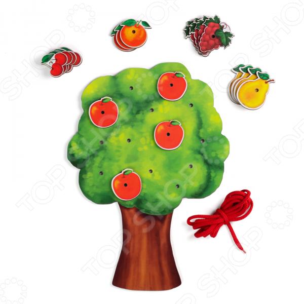 Шнуровка PAREMO «Фруктовое дерево»
