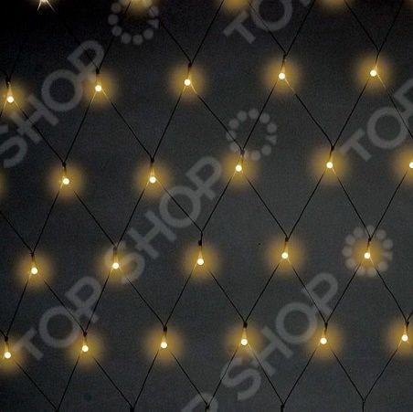 Гирлянда светодиодная Neon-Night свечение с динамикой «Сеть». Цвет: черный