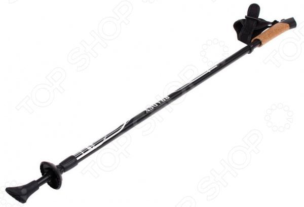 Палки для скандинавской ходьбы Bradex Nordic Style II 1