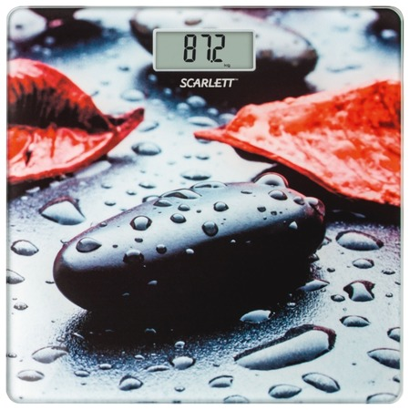 Купить Весы Scarlett SC-BS33E052