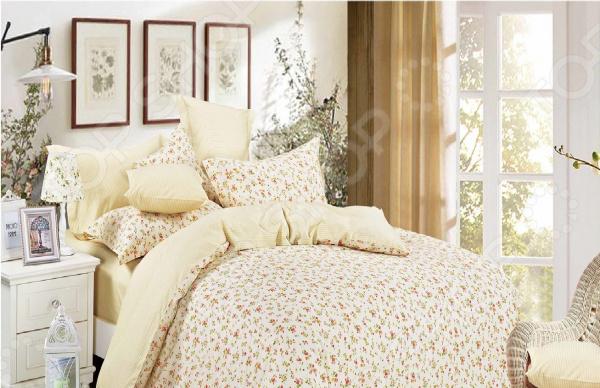все цены на Комплект постельного белья Cleo 043-SR онлайн