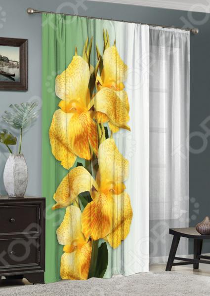 Комплект: фотоштора и тюль ТамиТекс «Желтые ирисы»