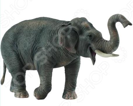 Фигурка Collecta «Азиатский слон» фигурки животных collecta азиатский слон 15 см