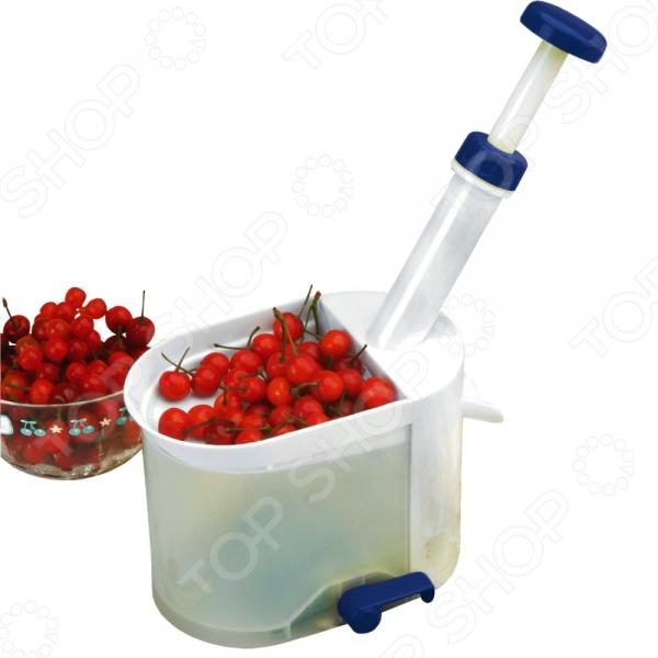 Отделитель косточек Rainstahl 8845RS/KA. В ассортименте устройство для удаления вишневых косточек gefu
