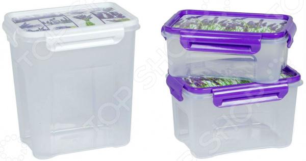 Набор контейнеров для СВЧ Полимербыт SGHPBKP102 «Лаванда»