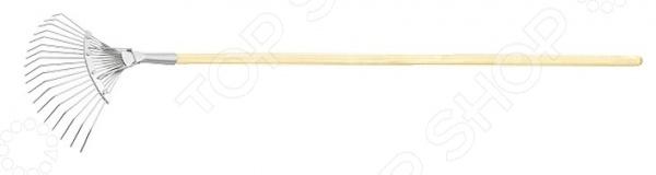 Грабли веерные СИБРТЕХ 61781