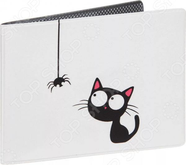 Обложка для студенческого билета Mitya Veselkov «Кошка и паучок» цена