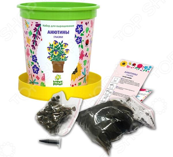 Набор для выращивания Happy Plant «Горшок. Анютины глазки» набор для опытов и экспериментов happy plant горшок анютины глазки