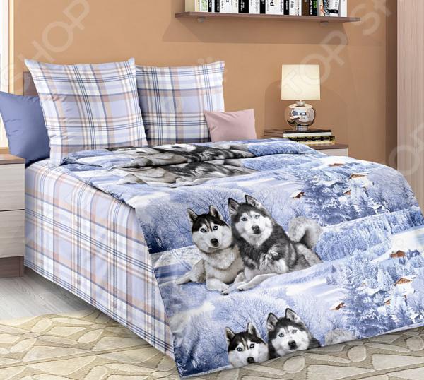 Комплект постельного белья Белиссимо «Хаски» что необходимо для хаски содержащейся в квартире