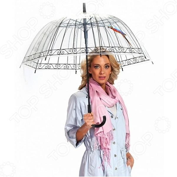 Зонт-трость Райская птица 2