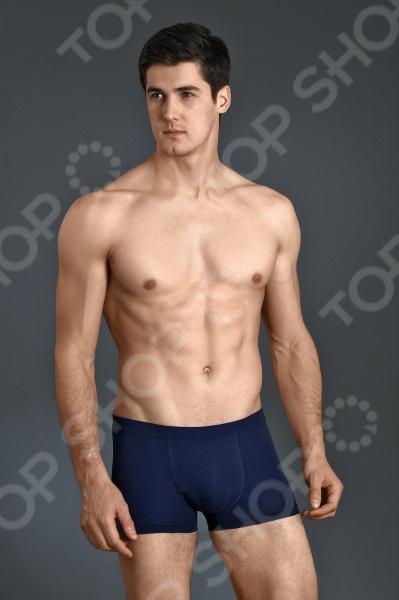 Трусы-боксеры Milliner 1613207. Цвет: темно-синий