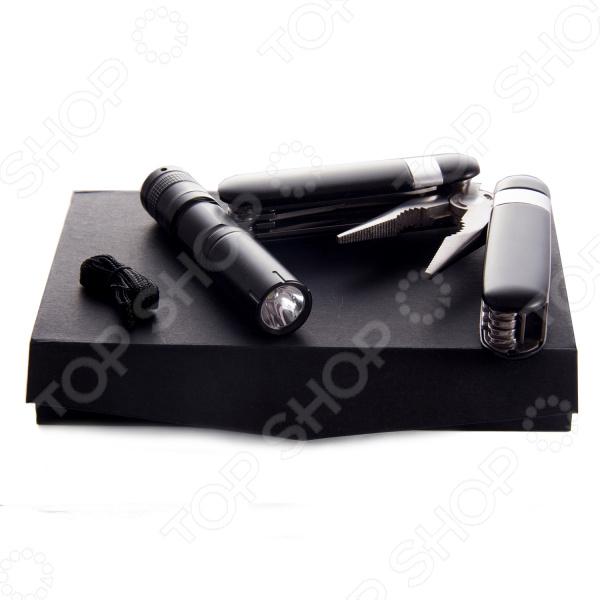 Набор: пассатижи, фонарик и батарейка 299030