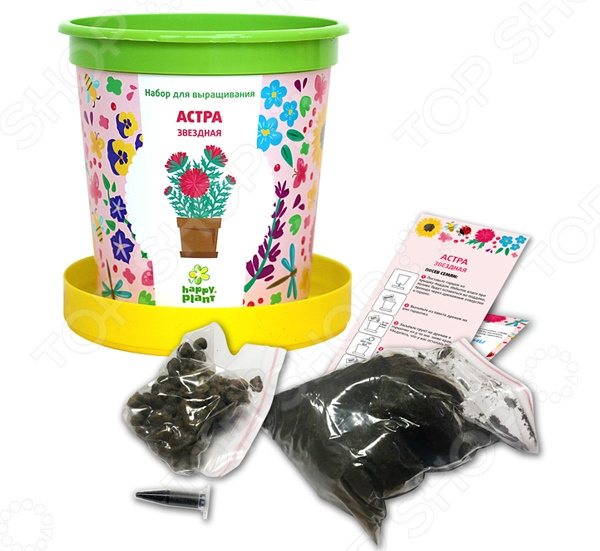 Набор для выращивания Happy Plant «Горшок. Астра звездная» набор для опытов и экспериментов happy plant астра звездная