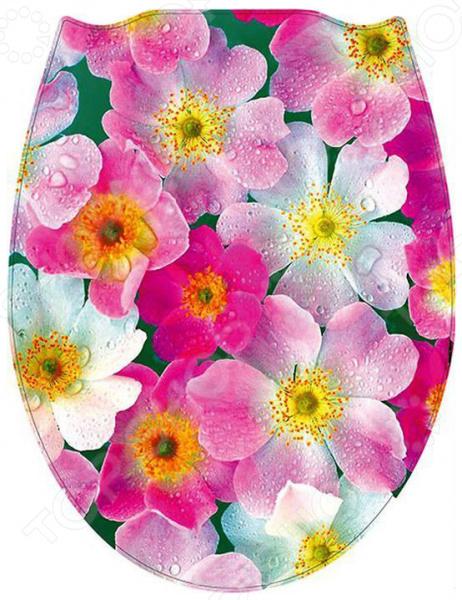 Сиденье для унитаза Стар Экспо «Цветы» сувенир экспо