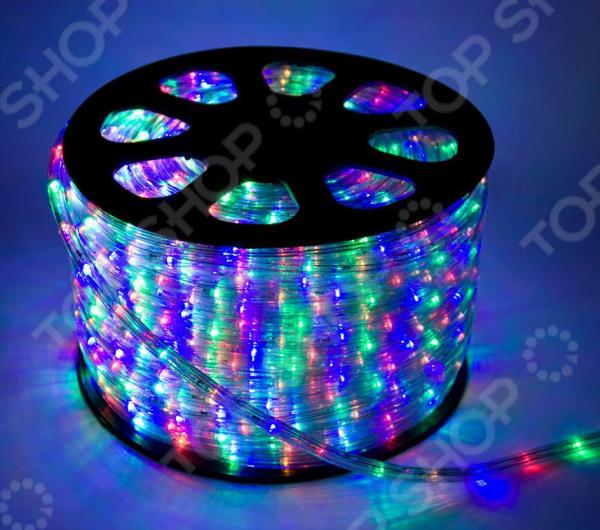 Дюралайт Neon-Night свечение с динамикой