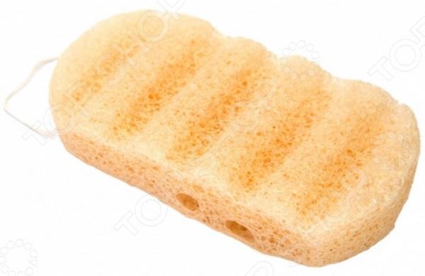 Губка для душа Bradex Konjac Sponge «Сокровище Азии» Губка для душа Bradex Konjac Sponge «Сокровище Азии» /