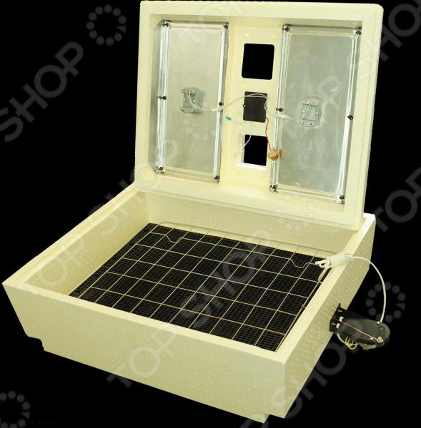 Инкубатор Золушка ИК 70/220В (А)