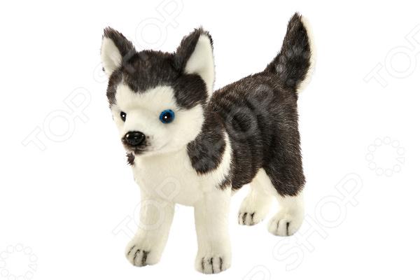 Мягкая игрушка Hansa «Щенок Хаски стоящий» hansa мягкая игрушка щенок хаски