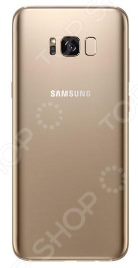 Смартфон Samsung Galaxy S8 64Gb одно из лучших творений инженерной мысли специалистов компании Samsung. Концепция телефона продумана таким образом, чтобы обеспечить полное погружение при работе с приложениями, просмотре видео и фото на большом 6,2 дюймовом экране без боковых рамок.  Роскошь и стиль Дизайн смартфона привлечет восторженные взгляды окружающих. Каждая линия и изгиб продуманы до мелочей, чтобы телефон не только выглядел красиво, но и удобно лежал в руке. Samsung Galaxy S8 тот самый гаджет, что подчеркнет ваш стиль и статус.  Однако помимо красоты S8 может похвастаться и другими преимуществами:  Экран Super AMOLED с разрешением Quad HD показывает невероятно четкую картинку с сочными цветами близкими к реальным.  Основная камера на 12 Мп со светосильным объективом F1.7 обеспечивают быструю фокусировку и превосходное качество снимков, даже при съемке в движении. Это также возможно благодаря технологии Dual Pixel, используемой в профессиональных зеркальных камерах.  Передняя камера на 8 Мп в сочетании с интеллектуальным автофокусом и функцией распознавания лиц позволяет делать идеальные селфи .  Съемка видео в разрешении 4K при 30 кадрах в секунду.  Мощный 8 ядерный процессор, созданный по 10 нм техпроцессу, обеспечивает высокую производительность при малых затратах энергии аккумулятора.  Класс IP68 защита от пыли и грязи. Оставайтесь на связи даже во время дождя.  Интеллектуальный помощник Bixby: распознает голосовые команды, позволяет использовать камеру для поиска информации в соответствии со снятой фотографией.  Объем встроенной памяти может быть расширен за счет приобретения microSD карты вплоть до 256 Гб.  Ваши секреты под надежной защитой  Личная информация на телефоне надежно защищена. Достаточно включить доступ к смартфону при помощи проверки сканером радужной оболочки глаза. Также присутствует функция распознания лиц. Используя эти технологии, только владелец сможет получить доступ к функциям своего гаджета. Спешите ощутить всю мощь Samsung Galaxy 