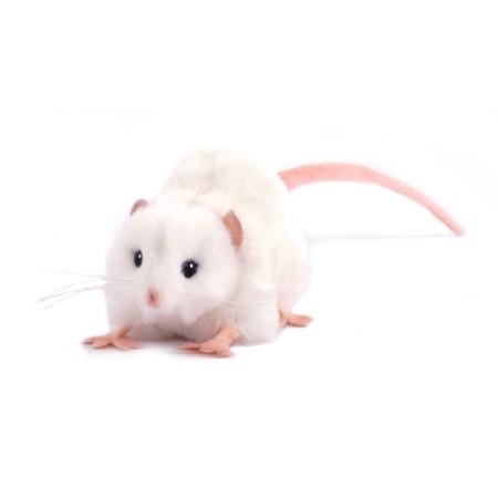 Купить Мягкая игрушка Hansa «Крыса белая»