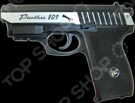 �������� �������������� Borner Panther 801
