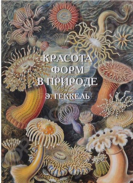 В альбом вошли иллюстрации известного немецкого ученого Э. Геккеля. Часть организмов, например радиолярии, изображенных в книге, была обнаружена и описана самим Э. Геккелем.