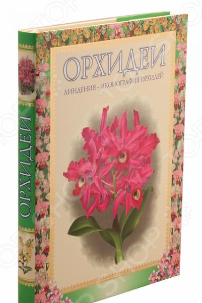 Очередной альбом из серии Красота природы . В альбоме представлены более двухсот цветных рисунков орхидей, выполненных лучшими художниками-ботаниками конца 19 века.