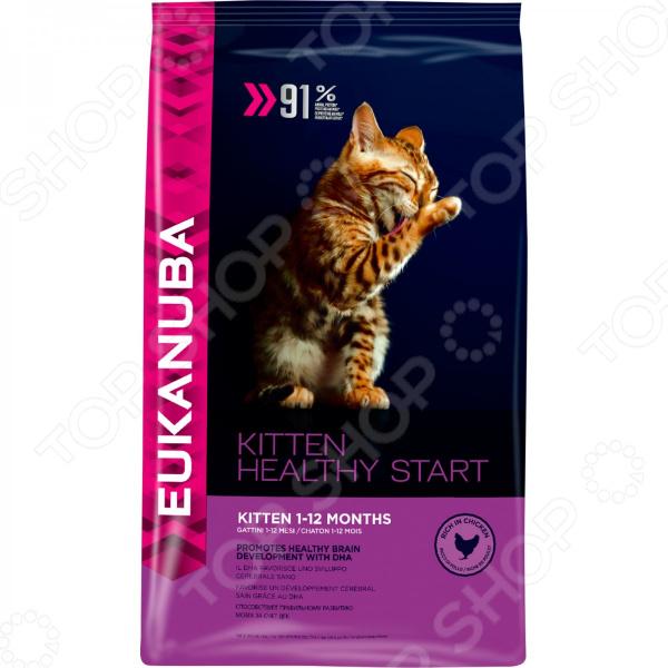 Корм сухой для котят Eukanuba Kittien Healthy Start