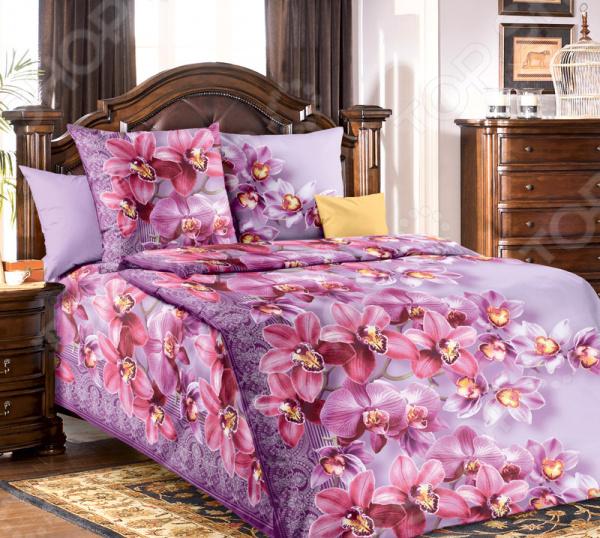 цена Комплект постельного белья ТексДизайн «Волшебные грезы» онлайн в 2017 году