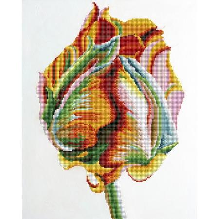 Купить Набор для творчества Color Kit «Алмазная мозаика». Рисунок: «Рождение»