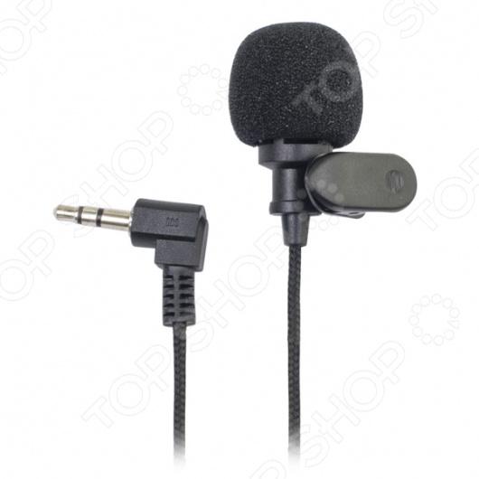 цена на Микрофон Ritmix RCM-101
