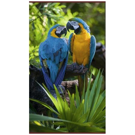 Купить Обогреватель настенный Домашний очаг «Попугаи»