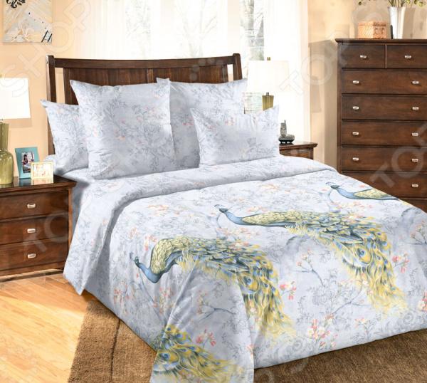 цена Комплект постельного белья ТексДизайн «Оазис» онлайн в 2017 году