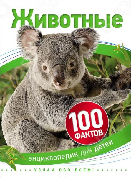 Животные. Растения. Природа Росмэн 978-5-353-07621-6 цена