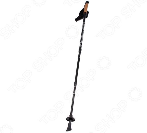 Палки для скандинавской ходьбы Bradex Nordic Style III 3