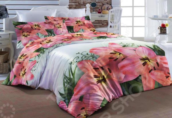 Комплект постельного белья ТамиТекс «Россо»