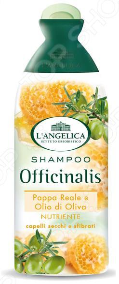 Шампунь L'ANGELICA «Питательный» с маточным молочком и оливковым маслом