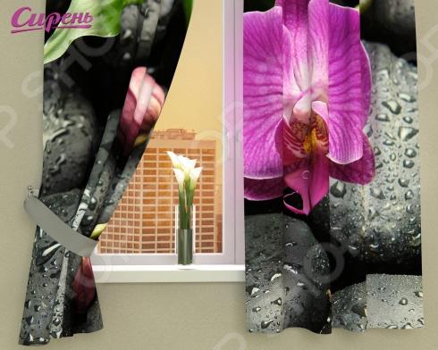 цены Фотошторы Сирень «Орхидея на камнях»