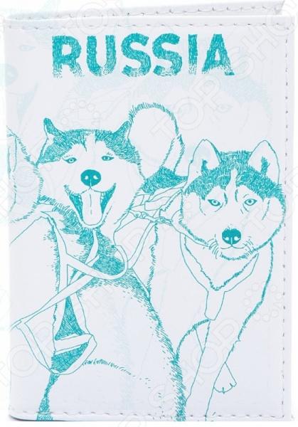 Обложка для паспорта кожаная Mitya Veselkov «Сибирские хаски» как уговорить маму собаку хаски