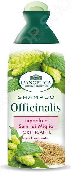 Шампунь L'ANGELICA «Укрепляющий» с экстрактом хмеля и просо