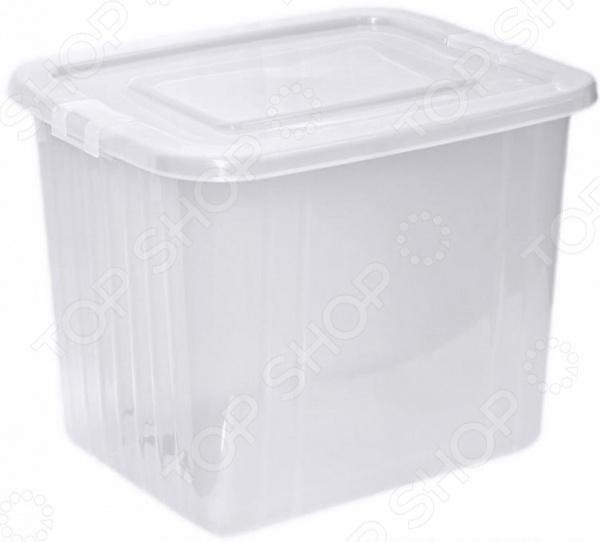 Ящик для хранения Violet 1760 прозрачный цин вэй прозрачный ящик для обуви толстый ящик сочетание из пластиковых ящик для хранения женских моделей 6 загружен синий