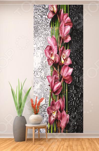Фотообои ТамиТекс «Орхидея на стекле»