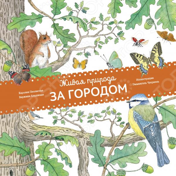 Животные. Растения. Природа Манн, Иванов и Фербер 978-5-00100-090-7 Живая природа. За городом