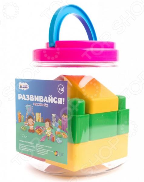 Конструктор для малышей Пластмастер «Маленький домик»