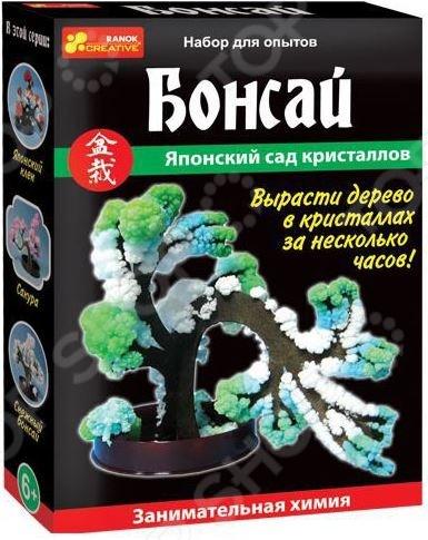 Набор для выращивания Ранок «Японский сад кристаллов. Бонсай» отсутствует бонсай